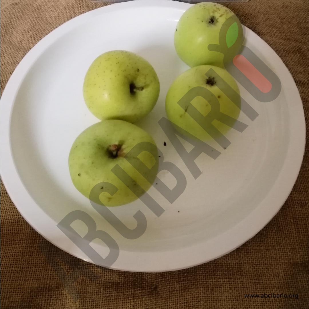 mela calvilla